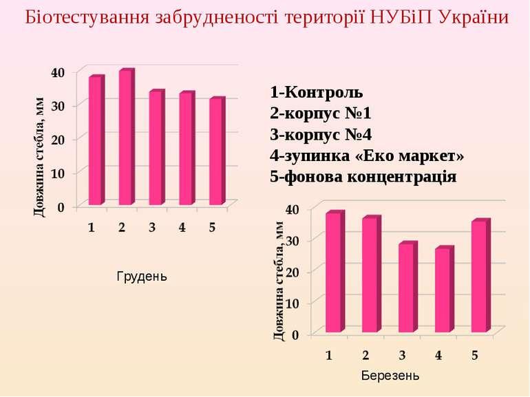 Біотестування забрудненості території НУБіП України Грудень Березень 1-Контро...