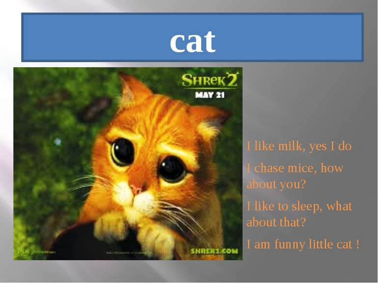 cat I like milk, yes I do I chase mice, how about you? I like to sleep, what ...
