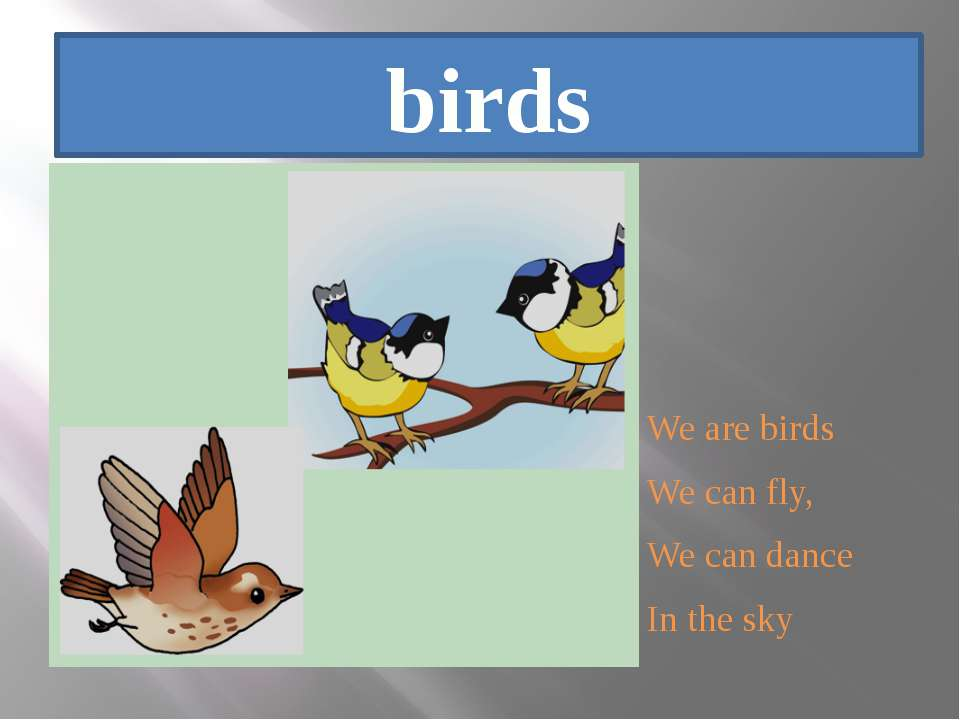 birds We are birds We can fly, We can dance In the sky