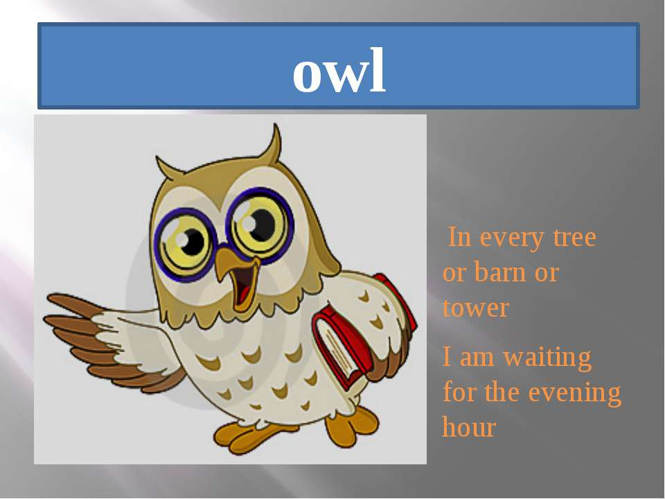 owl In every tree or barn or tower I am waiting for the evening hour