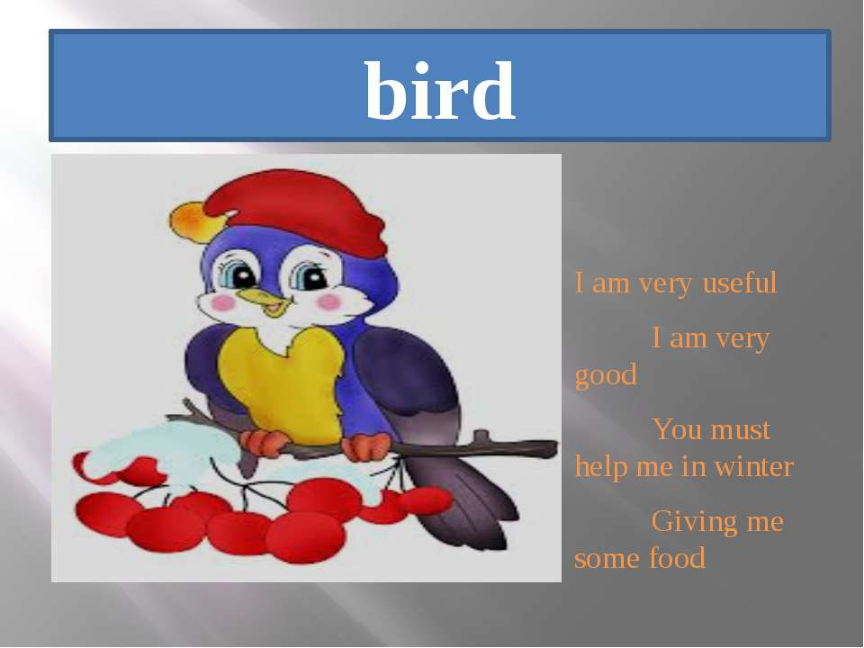 bird I am very useful I am very good You must help me in winter Giving me som...