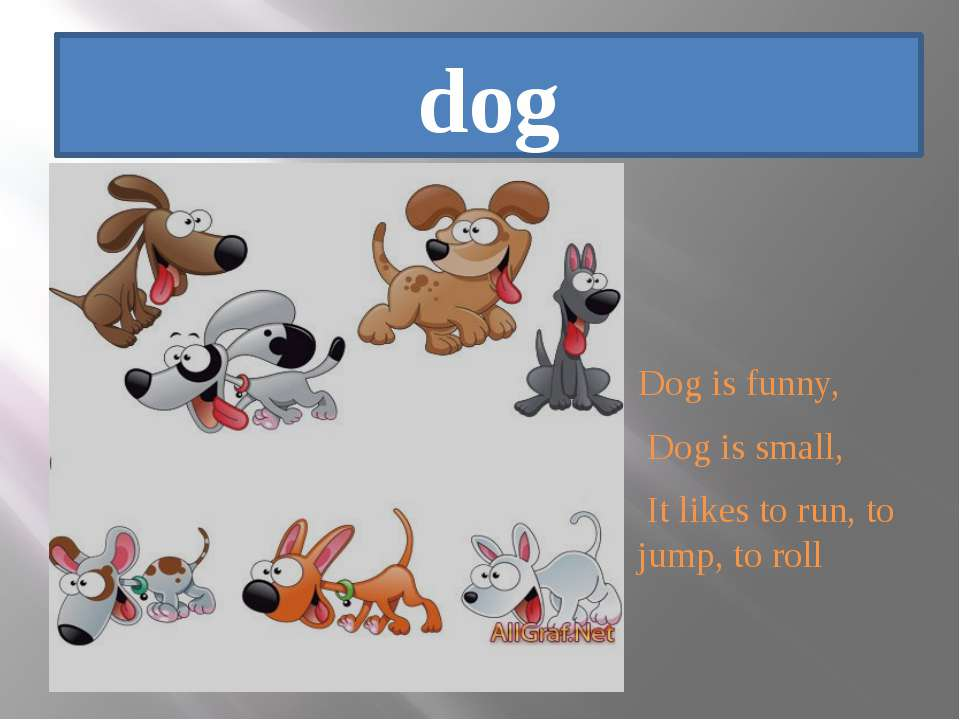 dog Dog is funny, Dog is small, It likes to run, to jump, to roll