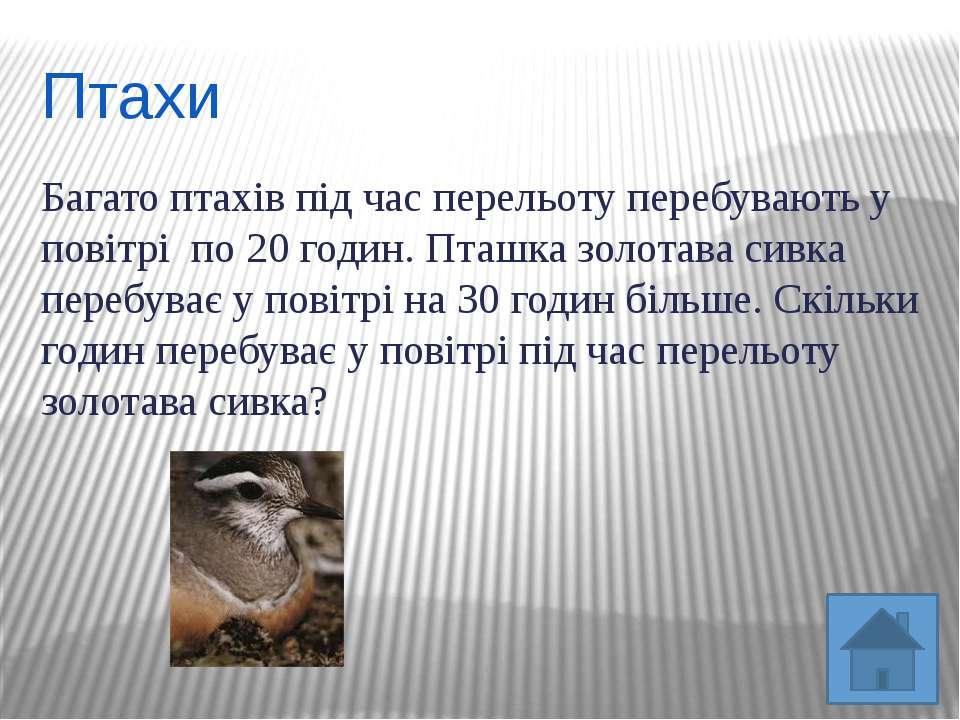 ПтахиБагато птахів під час перельоту перебувають у повітрі по 20 годин. Пташк...