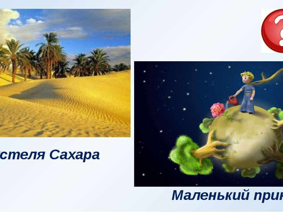 Пустеля Сахара Маленький принц