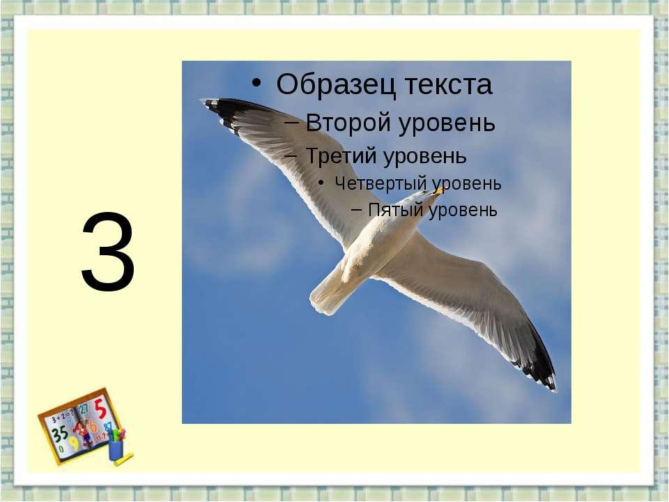 3 http://aida.ucoz.ru