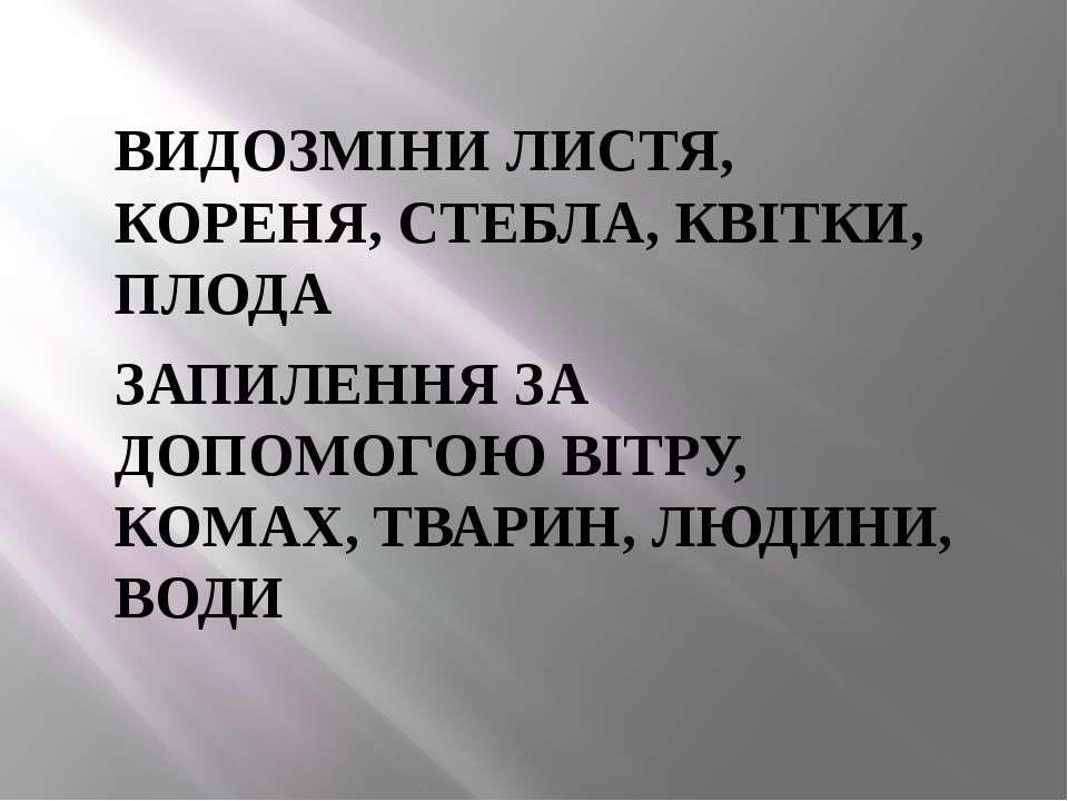 ВИДОЗМІНИ ЛИСТЯ, КОРЕНЯ, СТЕБЛА, КВІТКИ, ПЛОДА ЗАПИЛЕННЯ ЗА ДОПОМОГОЮ ВІТРУ, ...