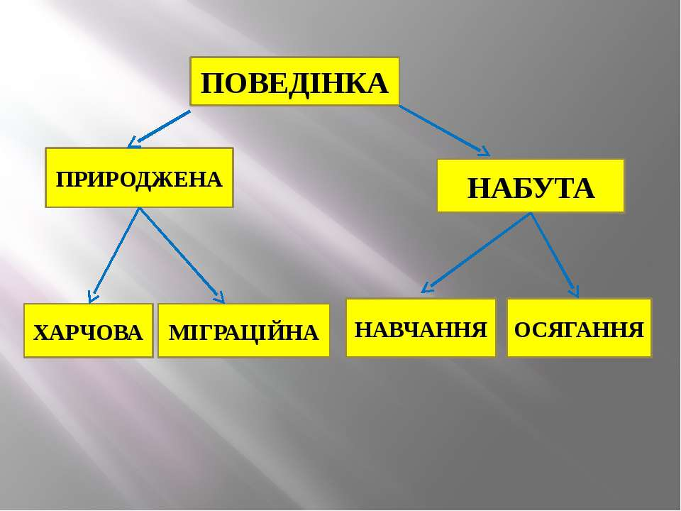 ПОВЕДІНКА ПРИРОДЖЕНА НАБУТА ХАРЧОВА МІГРАЦІЙНА НАВЧАННЯ ОСЯГАННЯ