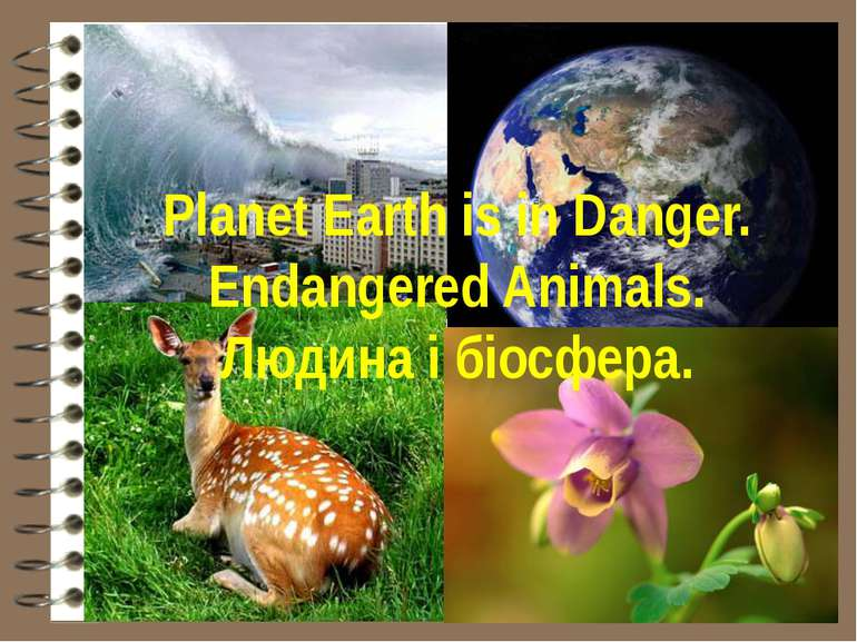 Planet Earth is in Danger. Endangered Animals. Людина і біосфера.