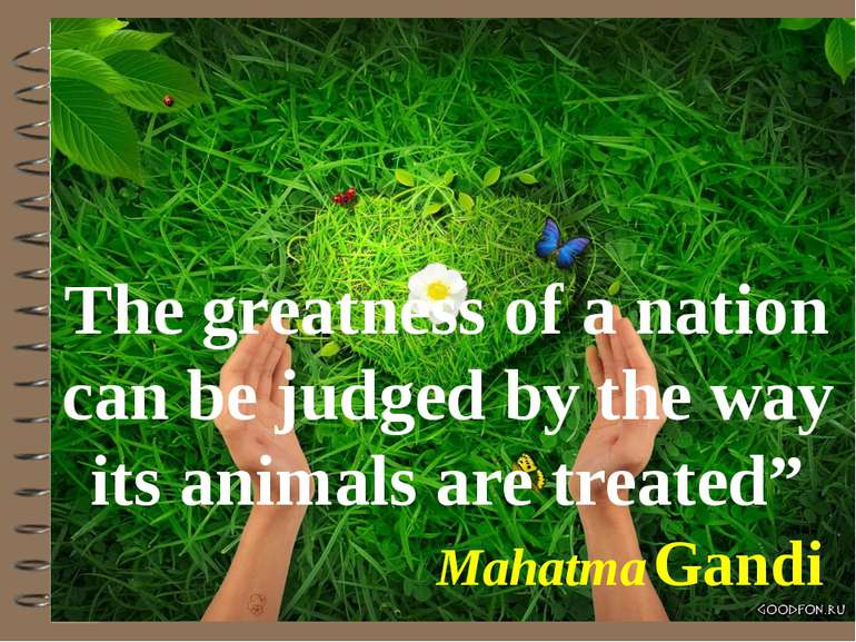 "The greatness of a nation can be judged by the way its animals are treated"" M..."