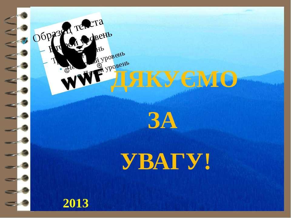 ДЯКУЄМО ЗА УВАГУ! 2013