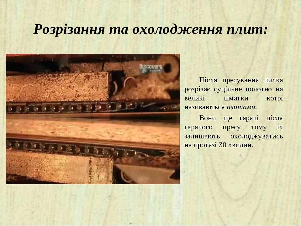 Розрізання та охолодження плит: Після пресування пилка розрізає суцільне поло...