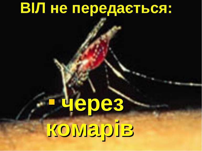 через комарів ВІЛ не передається: