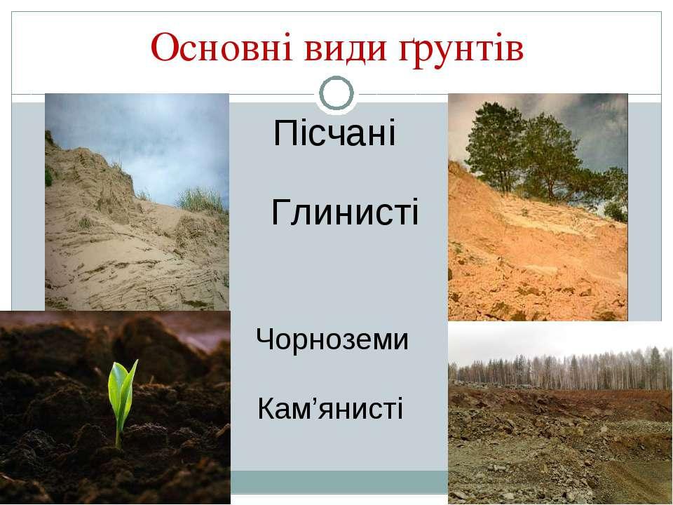 Основні види ґрунтів Пісчані Глинисті Чорноземи Кам'янисті