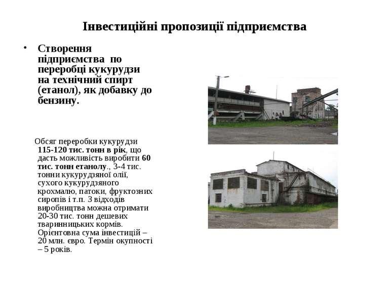 Інвестиційні пропозиції підприємства Створення підприємства по переробці куку...