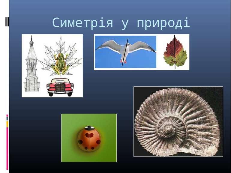 Симетрія у природі
