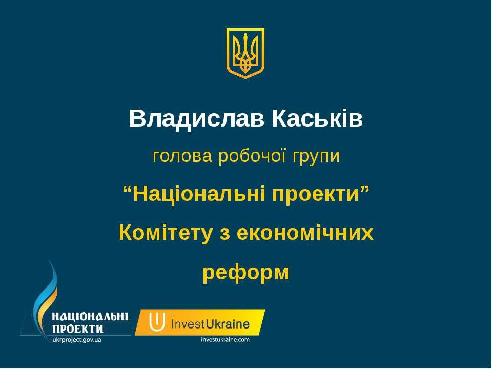 """Владислав Каськів голова робочої групи """"Національні проекти"""" Комітету з еконо..."""
