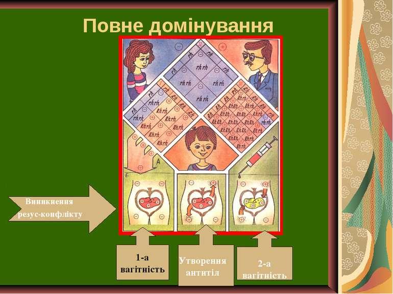 Повне домінування Виникнення резус-конфлікту 1-а вагітність Утворення антитіл...