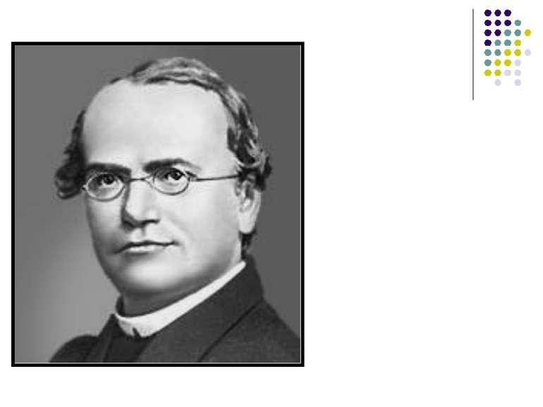 Грегор Мендель родився 22 червня 1822 року в невеликому селі Хінчінци на тери...