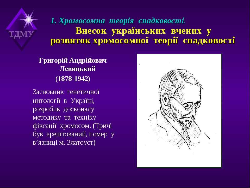 1. Хромосомна теорія спадковості. Внесок українських вчених у розвиток хромос...