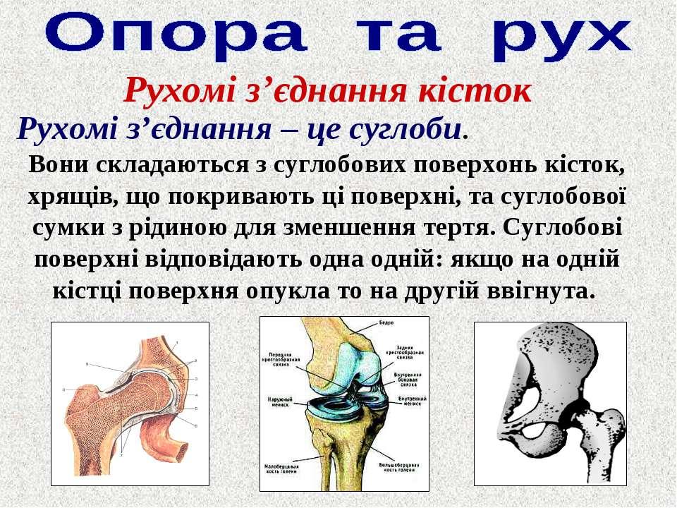 Рухомі з'єднання кісток Рухомі з'єднання – це суглоби. Вони складаються з суг...