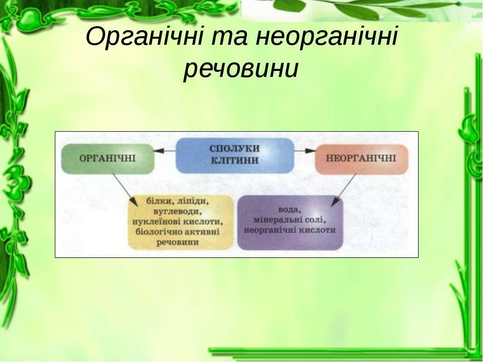 Органічні та неорганічні речовини