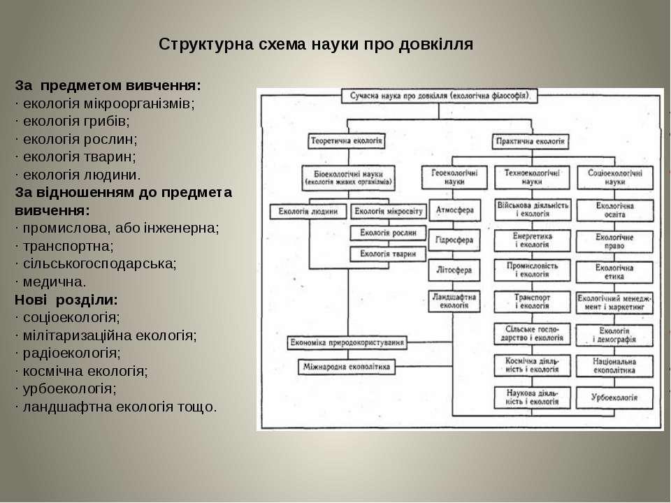 За предметом вивчення: · екологія мікроорганізмів; · екологія грибів; · еколо...