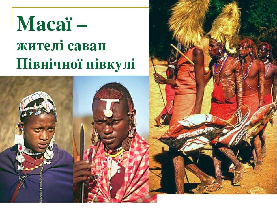 Масаї – жителі саван Північної півкулі
