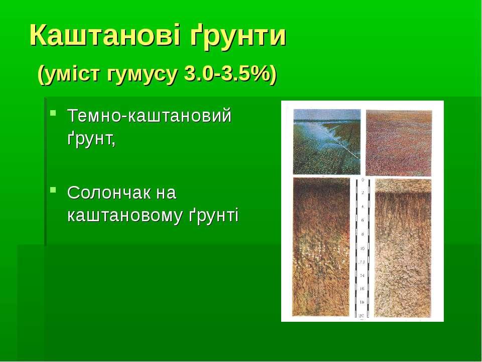 Каштанові ґрунти (уміст гумусу 3.0-3.5%) Темно-каштановий ґрунт, Солончак на ...