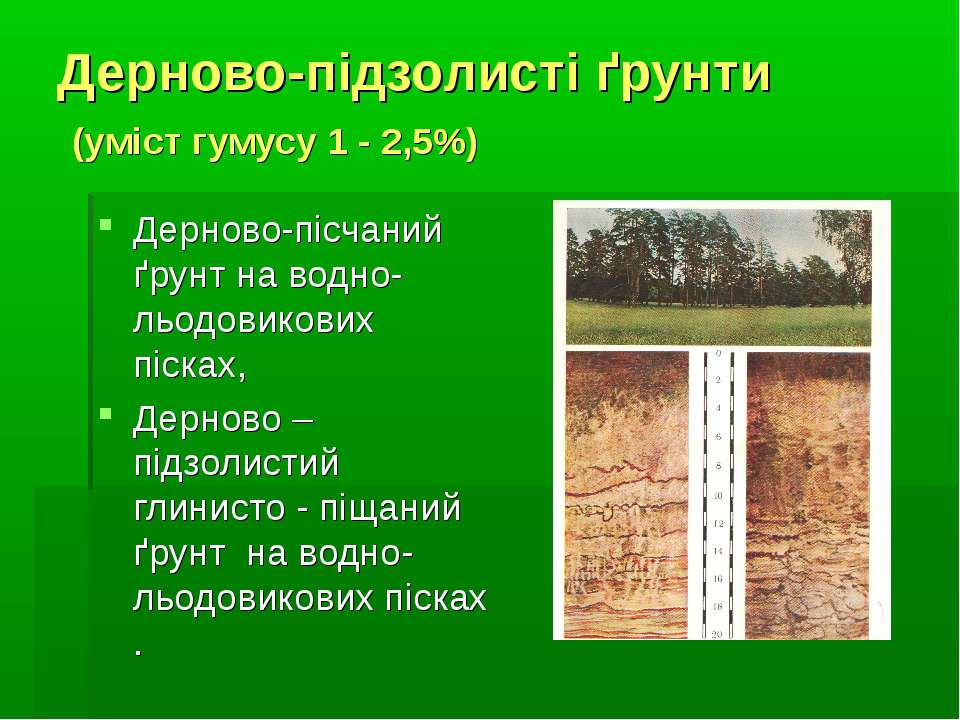 Дерново-підзолисті ґрунти (уміст гумусу 1 - 2,5%) Дерново-пісчаний ґрунт на в...
