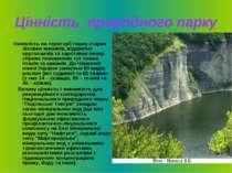 Цінність природного парку Наявність на території парку старих лісових масивів...