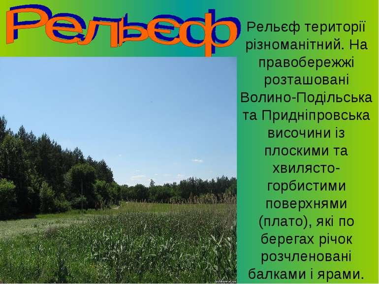 Рельєф території різноманітний. На правобережжі розташовані Волино-Подільська...