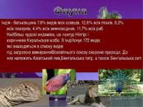 Індія -батьківщина7,6% видіввсіхссавців, 12,6% всіхптахів, 6,2% всіхпла...