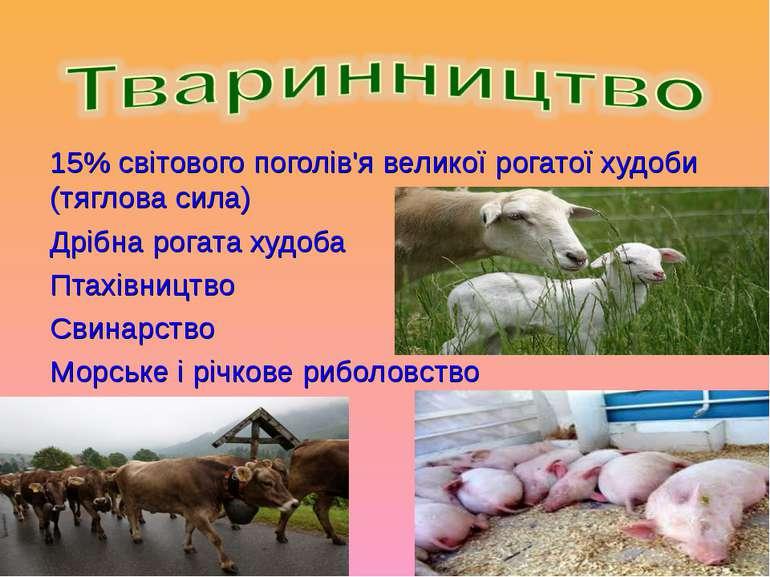 15% світового поголів'я великої рогатої худоби (тяглова сила) Дрібна рогата х...