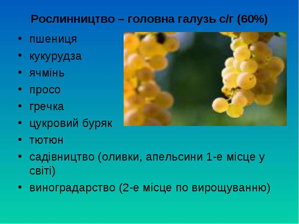 Рослинництво – головна галузь с/г (60%) пшениця кукурудза ячмінь просо гречка...