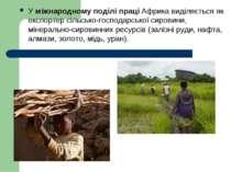 У міжнародному поділі праці Африка виділяється як експортер сільсько господар...