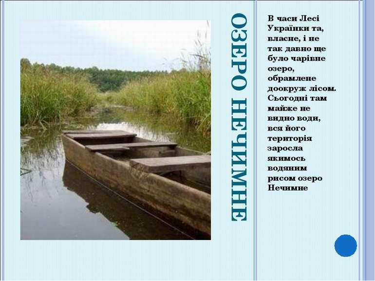 ОЗЕРО НЕЧИМНЕ В часи Лесі Українки та, власне, і не так давно ще було чарівне...