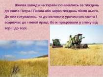 Жнива завжди на Україні починались за тиждень до свята Петра і Павла або чере...