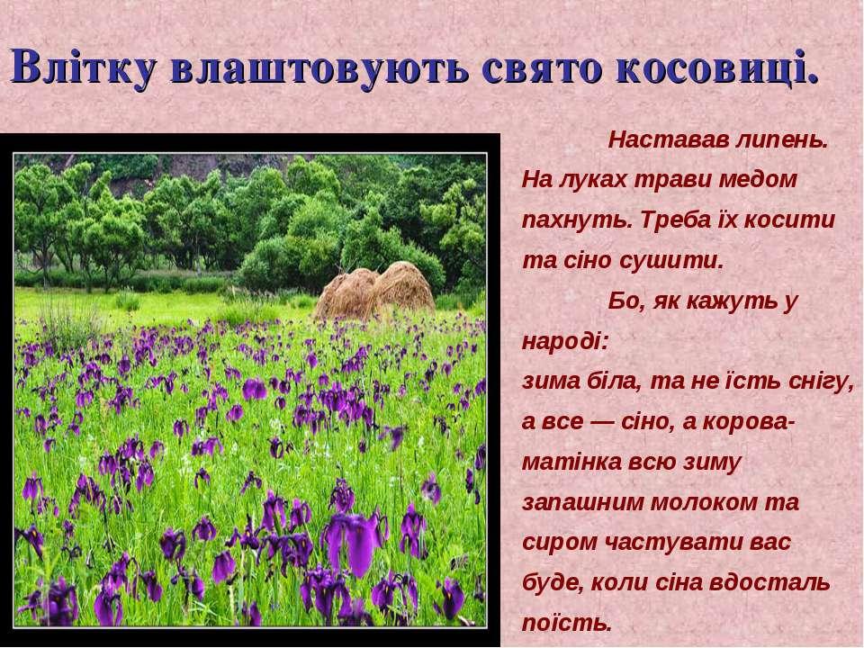 Влітку влаштовують свято косовиці. Наставав липень. На луках трави медом пахн...