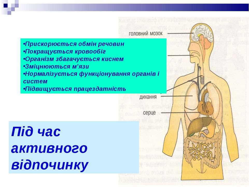 Прискорюється обмін речовин Покращується кровообіг Організм збагачується кисн...