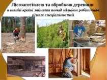 Лісозаготівлею та обробкою деревини в нашій країні зайнято понад мільйон робі...