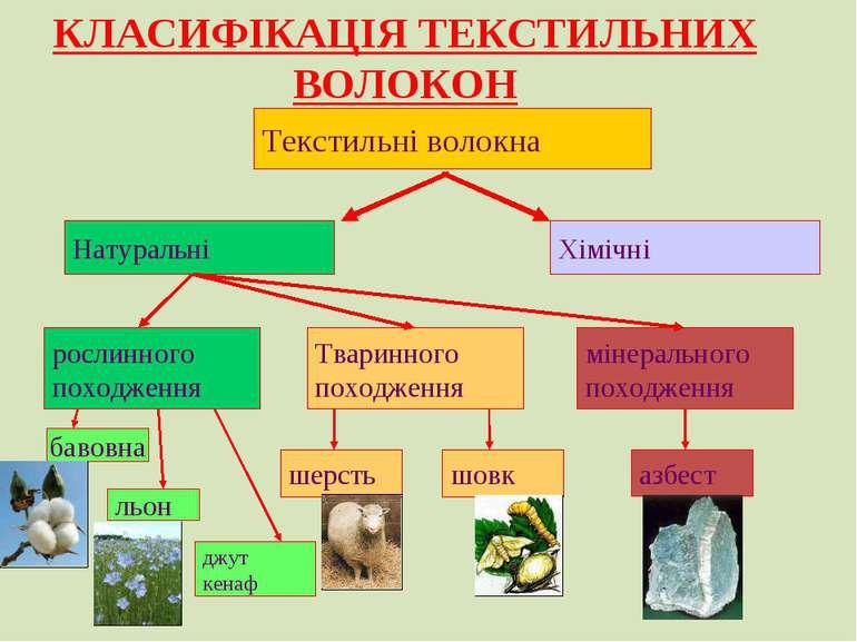 Текстильні волокна Натуральні Хімічні рослинного походження Тваринного походж...