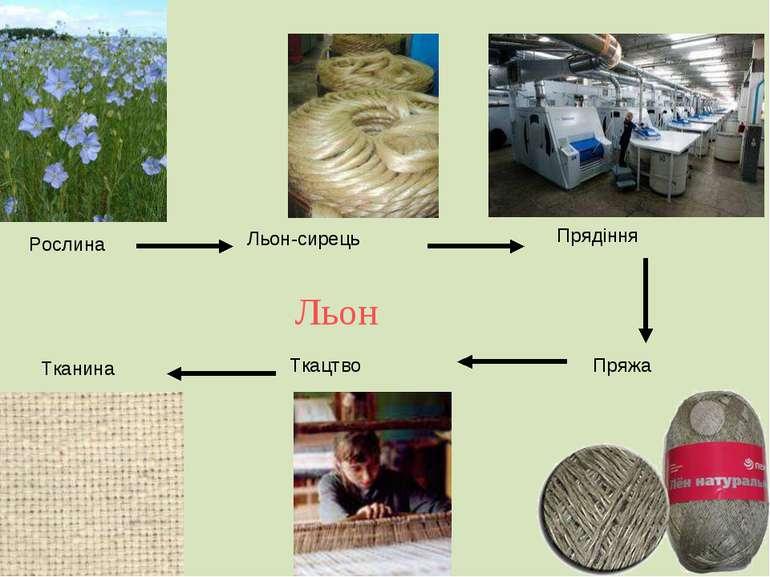 Рослина Льон-сирець Прядіння Пряжа Ткацтво Тканина Льон
