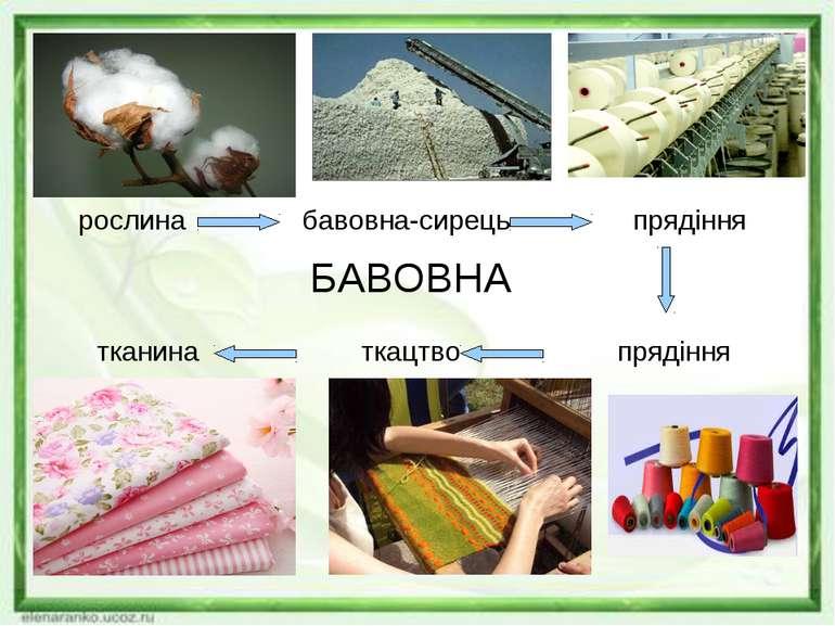 БАВОВНА рослина бавовна-сирець прядіння тканина ткацтво прядіння