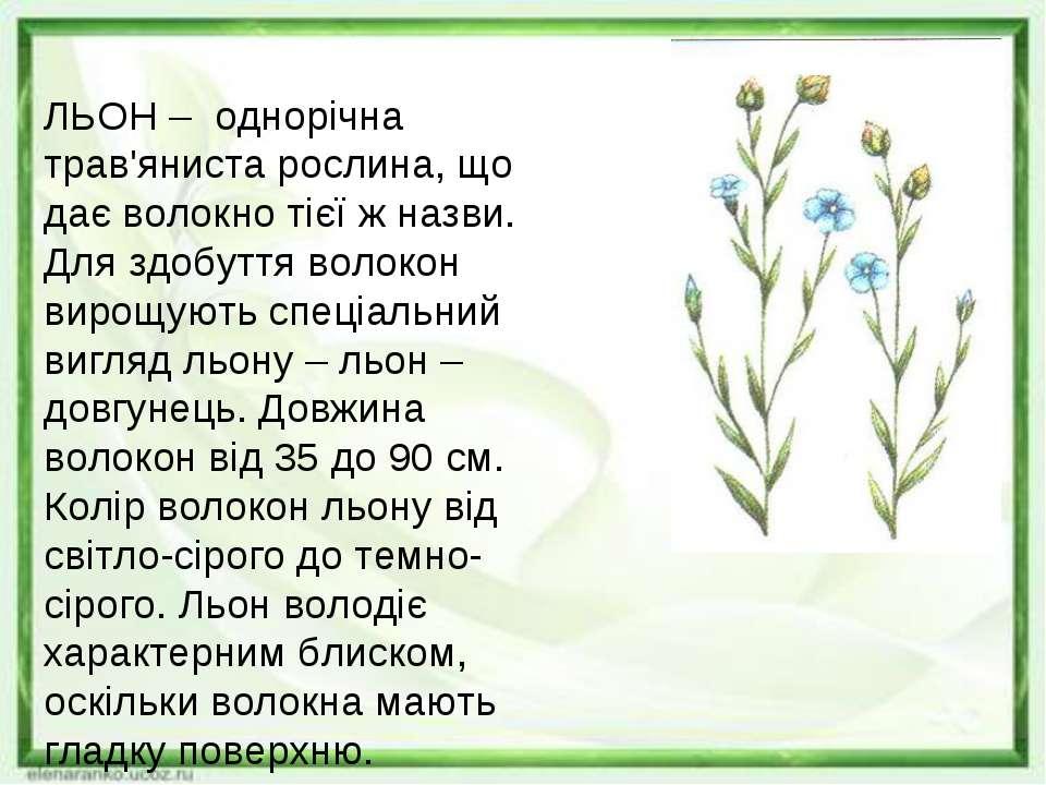 ЛЬОН – однорічна трав'яниста рослина, що дає волокно тієї ж назви. Для здобут...