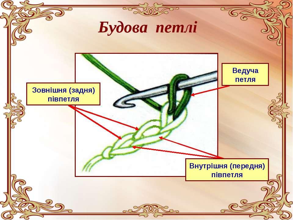 Будова петлі Зовнішня (задня) півпетля Внутрішня (передня) півпетля Ведуча петля