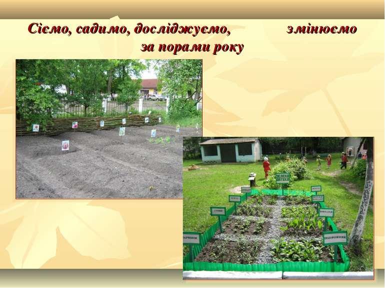 Сіємо, садимо, досліджуємо, змінюємо за порами року