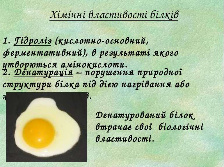 Хімічні властивості білків 1. Гідроліз (кислотно-основний, ферментативний), в...