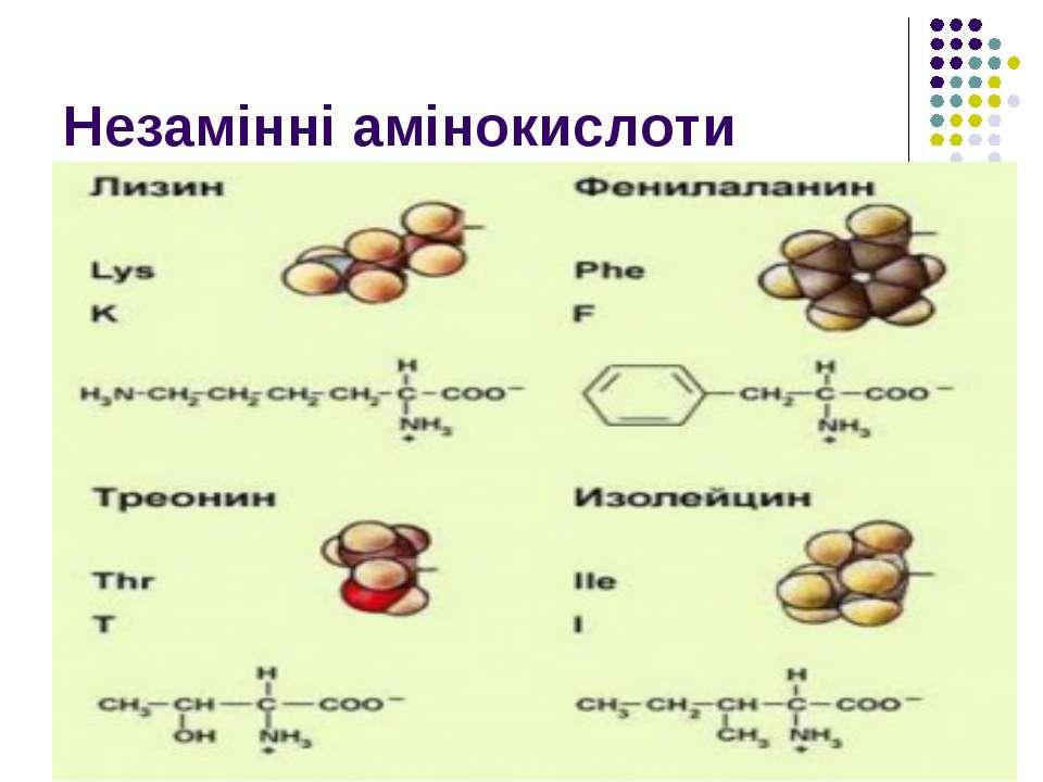 Незамінні амінокислоти