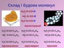 Склад і будова молекул Н2С-О-СО-С15Н31 Н2С-О-СО-С17Н35 Н2С-О-СО-С17Н33 НС- О-...