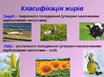 Класифікація жирів Тверді – тваринного походження (утворені насиченими карбон...